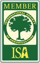 New Hampshire Tree Care Arboricultural Services ISA Certified